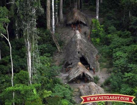 تصاويري از كشف قبيله اي ناشناخته در جنگلهاي انبوه برزيل