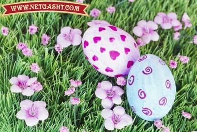 مجموعه کامل آموزش تصویری تزیین و رنگ کردن تخم مرغ سفره هفت سین سال 92
