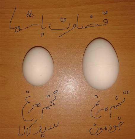 تخم مرغ های سبد کالا