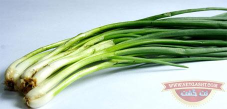 روش کاشت سبزیجات در خانه و آپارتمان: پیازچه و مرزه