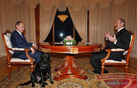 لابرادور سگ سیاه پوتین، زبده ترین افسر حفاظتی است که تاکنون سه بار جانش را نجات داده
